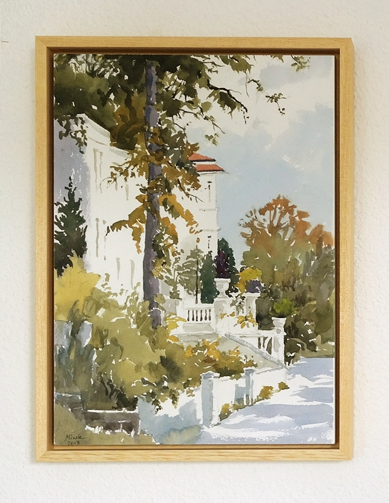 Framed watercolor 5