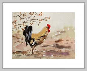 Rooster Mineke Reinders Watercolor 2020