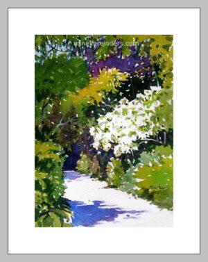 Gardens 18-100421-minekereinders-watercolor-frame