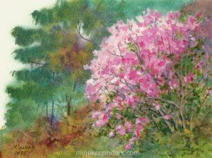Azalea -150421-minekereinders-watercolor
