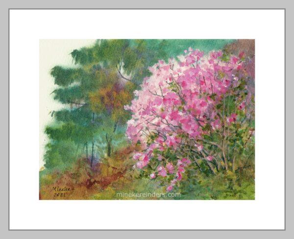 Azalea -150421-minekereinders-watercolor-frame