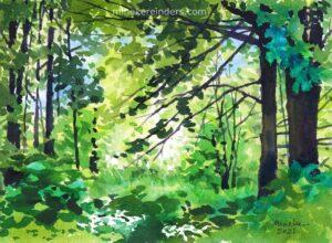 Woods 05-050521-minekereinders-watercolor