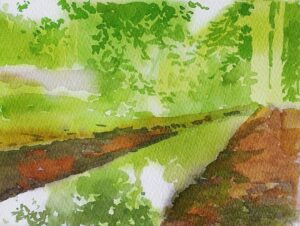 Woods 6 WIP 2