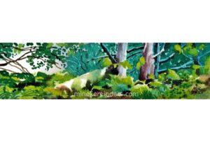 Woods 16 - 090621-minekereinders-watercolor-cr