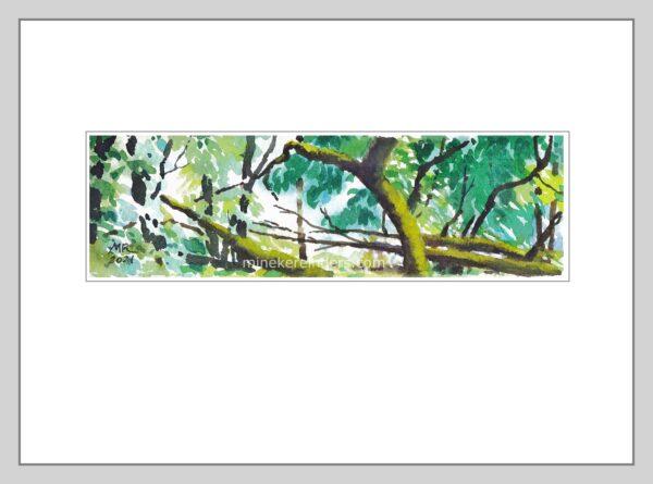 Woods 17 - 110621-minekereinders-watercolor-fr